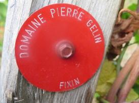 Ownership marker next to Noellat vines Fixin En Clomee