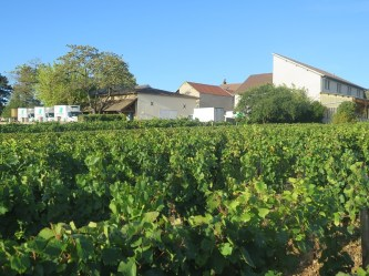 Vosne Village rear of Cuverie Vines looking towards rear of neighbour