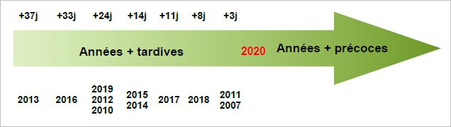 2020 vintage update