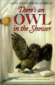 Owl Shower George