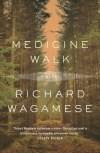 Medicine Walk Wagamese