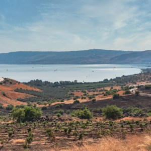 Fragments of Galilee