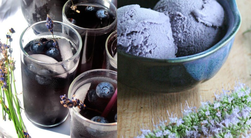 Welcome Drinks for a Lavender and Blueberry Wedding