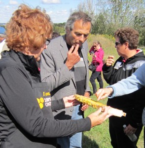Regional chair Gary Carr tasting honey on a farm tour. These days he is tasting the mood of the residents; wants to know rthat they are thinking.