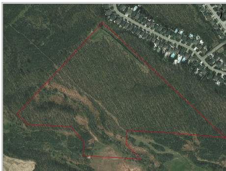 Aerial of the site with house location shown
