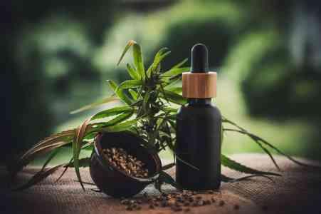 Indica, Sativa, and Hybrid Strains