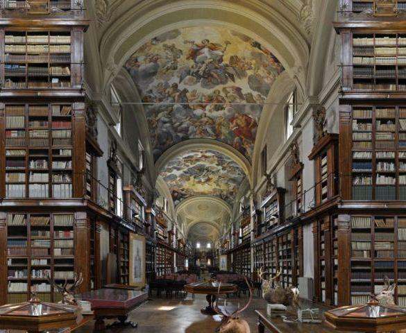 13 bibliotecas temáticas em SP que você precisa conhecer 16