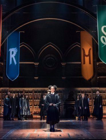Harry Potter | Franquia pode ganhar novo filme com o elenco original 20