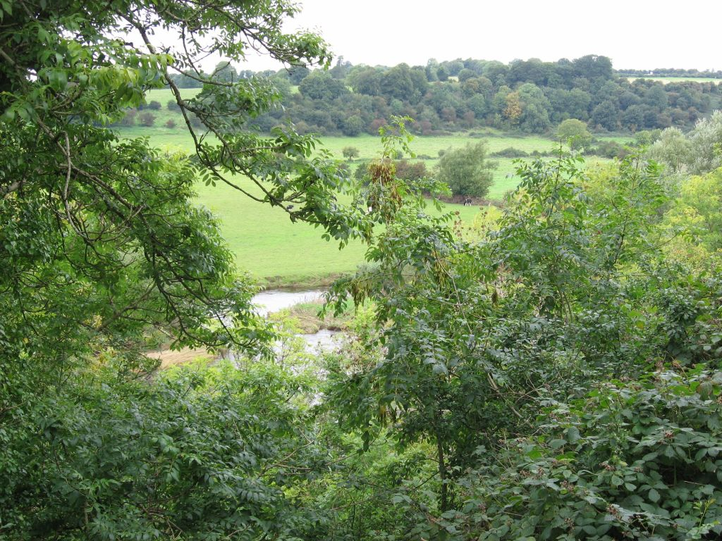 view down over the river, through ash trees, at New Grange