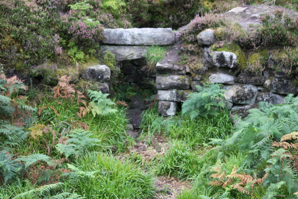 a stone arch overgrown with heather and grass