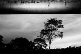 Ecuador, Amazon. December 2011. Oil pipeline called SOTE (Trans-Ecuadorian Pipeline System), it carries crude a distance of 503 km (310 miles) from the Amazon to the Pacific coast.
