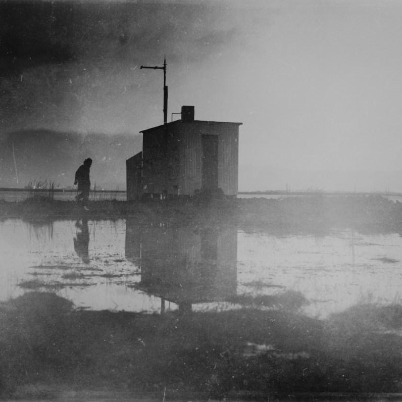 The marshy mirrors of Vesturbaer.