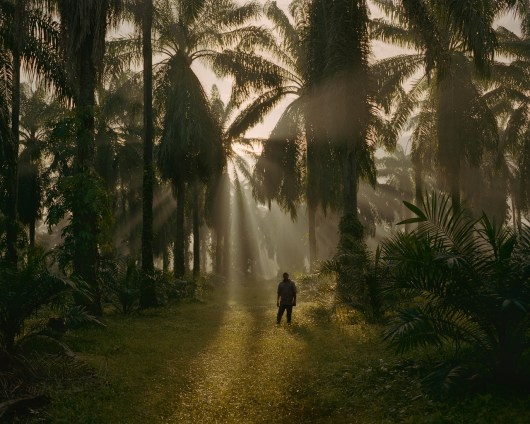 A campesino in Bajo Aguan, where local farm workers are waging a war against big African Palm companies. (Dominic Bracco II / Prime for Pulitzer Center on Crisis Reporting)