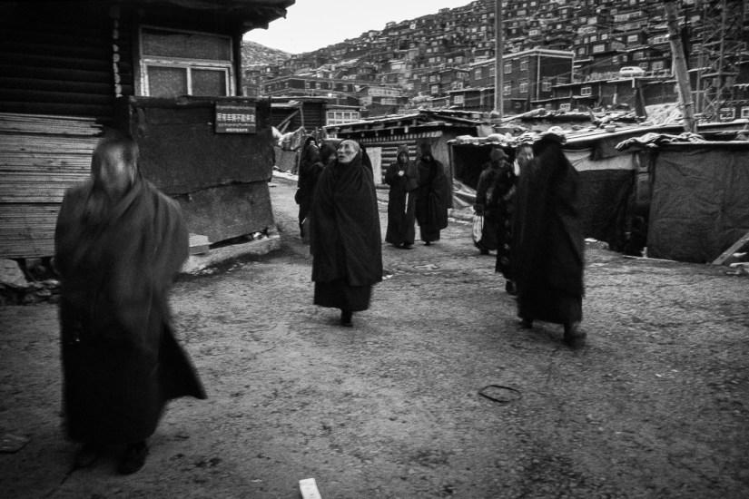 Tibet_-161