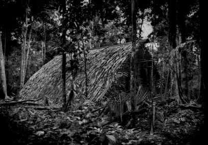 A traditional communal lodge used by Huaorani hunters and their families when they go into the rainforest, but they must be careful in the forest here because a breakaway group of self- imposed uncontacted (no contactos) Huaorani, called the Taromenani, live nearby. In 2013, a Taromeneni war party murdered Huaorani elder, Ompore Omeway and his wife, Buganey in this forest near the boundary of Yasuni National Park. The Huaorani retaliated, massacring roughly 20 Taromenani. There has been no resolution to this conflict, exacerbated by the encroachment of oil companies into the last pristine rainforests, including Yasuni National Park. Near Yawepare, south of Coca. Ecuadorian Amazonas.
