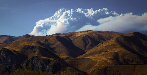 Day 7: A Horrible Beauty - A massive cloud of smoke rises from the Chelan Complex wildfires in Central Washington State. A few trees on the ridge line give a sense of the scale of this fire. This is a smaller complex of fires than the Okanogan Complex to the north where I was this past week. This was the view from Highway 99 that runs along the Columbia River north of the city of Wenatchee. The wildfire season in the western U.S. is now a month longer due to climate change. Drought here has made fire conditions explosive. Fire is a natural part of this ecology but the frequency, size, and unpredictable behavior of these fires is unprecedented in the modern history of this area.