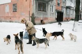 Posyolok district, Kalush, Ivank-Frankivsk region, February 2014