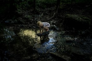My brother's eldest daughter Lina playing at a creek close to my parent's house. In that moment, her childhood was still perfect.