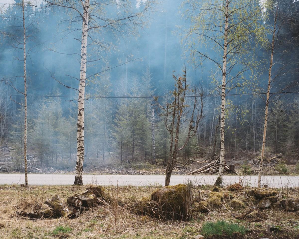 Terje Abusdal – The Forest Finns