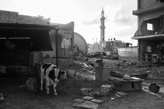 A rubbled farm and demolished mosque are seen in Khuza'a, Khan Younis, southern Gaza, Palestine, on Nov. 3rd 2014.