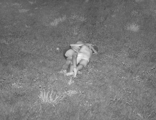 15 - Grass At Night - 6bbf78aa-c54b-4299-abc8-b2891cd63f6d