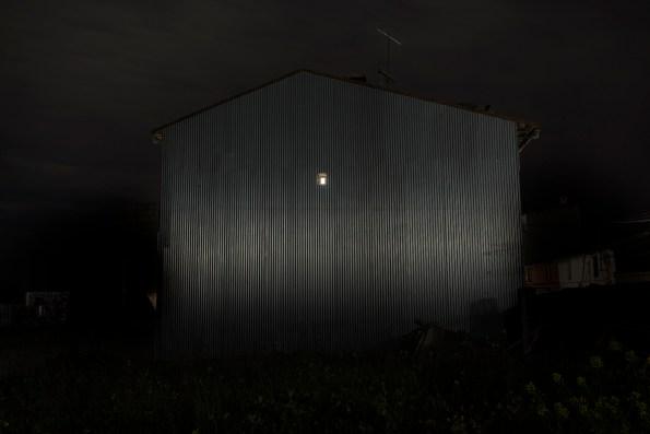 29_Oskar Alvarado_Where Fireflies Unfold