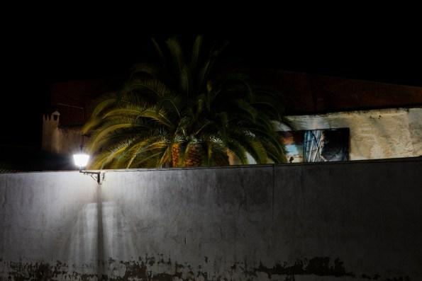 34_Oskar Alvarado_Where Fireflies Unfold