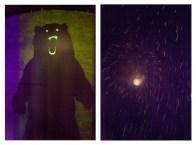 "12 - ""Bear & Fireworks"" - 82698a85-3047-459d-bf02-e047b68ca22e"