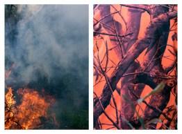 """16 - """"Fire & Hunters vest"""" - 6a1980c5-de61-4664-831d-d217b456b68b"""