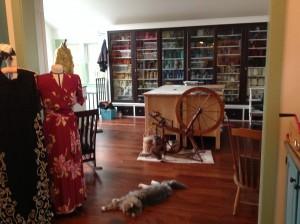 Darwin greets you at the upstairs entrance