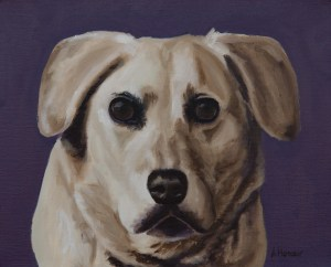 """Dopey"" White Lab Dog Portrait by Amber Honour burntumberarts.com"