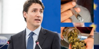 Trudeau stoned no more?