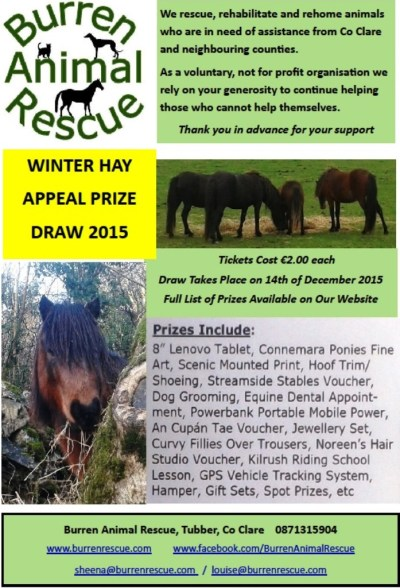 winter draw poster 2015