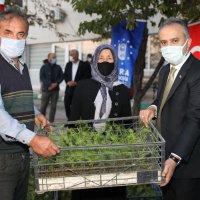 Dağ yöresine nitelikli tarım desteği (GÖRÜNTÜLÜ)