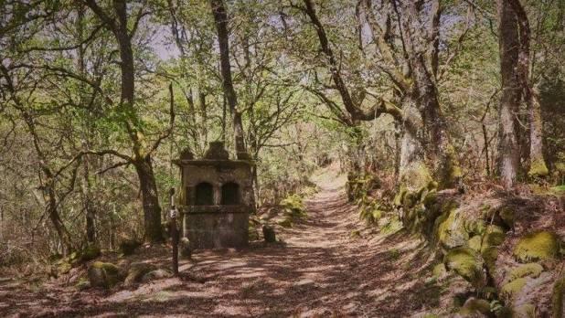 Ruta del Camino Real