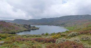 La Laguna de Carros