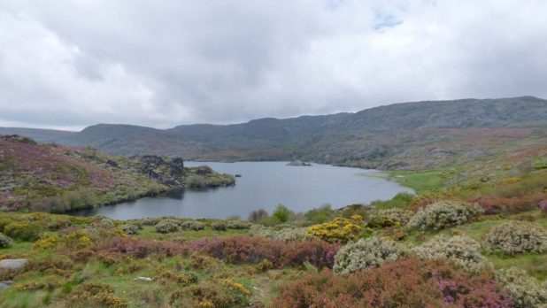 Laguna de Carros