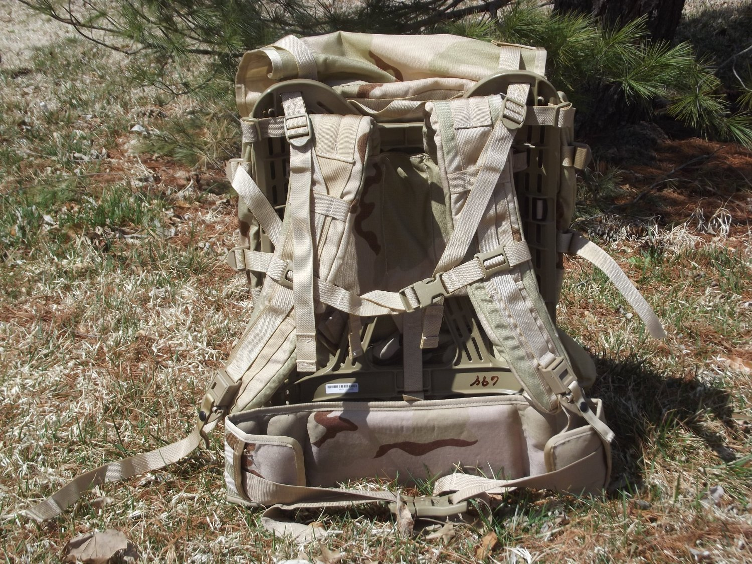 MOLLE II Standard Pack Desert Genuine U.S. Military outside