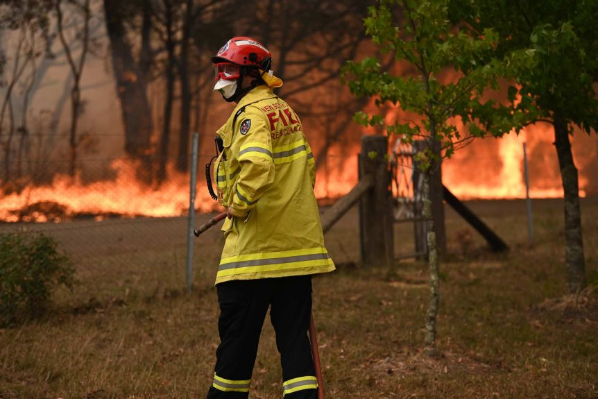 Scott Mackie helped to water bomb fires in NSW last summer.(ABC News: Brendan Esposito)