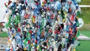 Top 10 tips to kickstart a new recycling strategy