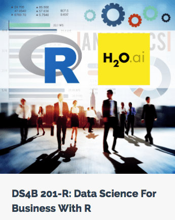 Data Science For Business With R Course