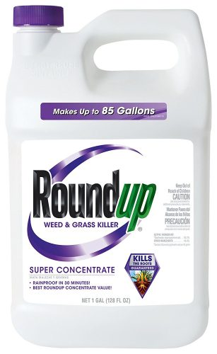 ROUNDUP WEED AND GRASS KILLER SUPER CONCENTRATE 1 GALLON - Weed killer