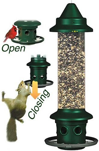 "Squirrel Buster Plus 6""x6""x28"" (w/hanger) Wild Bird Feeder with Cardinal Ring and 6 Feeding Ports, 5.1lb Seed Capacity"