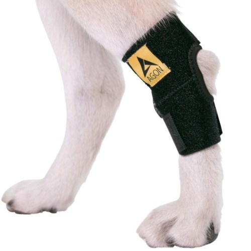 Agon Dog Canine Rear Hock Joint Brace Compression Wrap