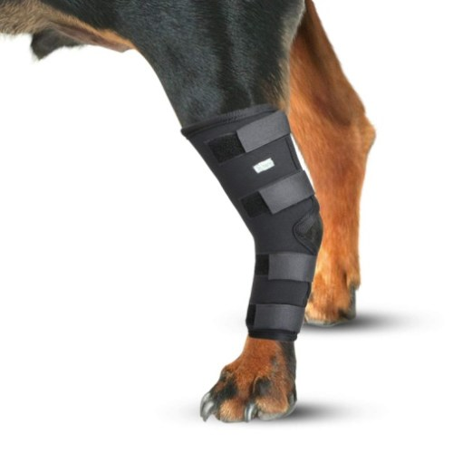 IN HAND Dog Leg Brace, Pair of Dog Canine Rear Leg Hock Joint Wraps Protects Wounds