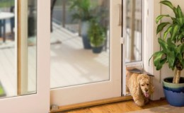 Sliding glass dog doors