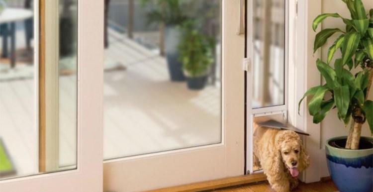 Sliding glass dog doors