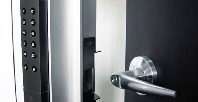 Electric Door Locks