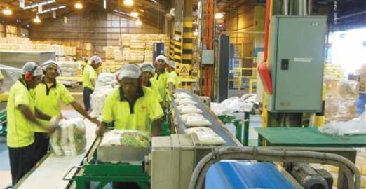 Workers in Lae packaging rice for the domestic market. Credit: Trukai
