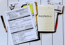 How Startups And Small Business Can Assess Payroll Software